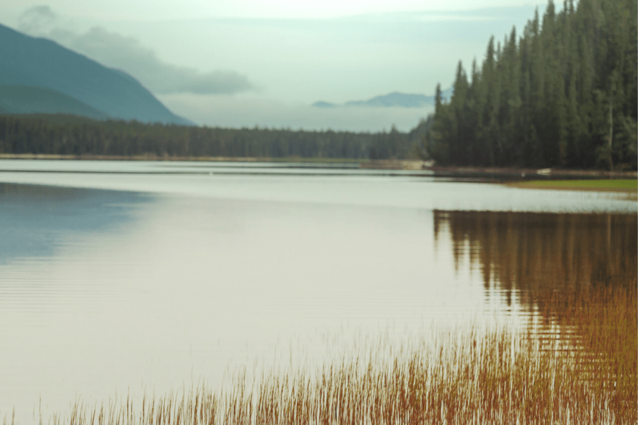 How to Sell a Fishing & Hunting Lodge, Marina or Resort Sole Proprietorship