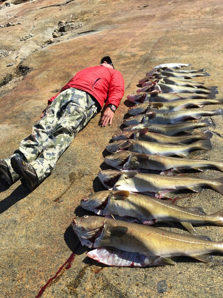 Greenland Hunting Operation For Sale